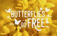 Butterflies Go Free