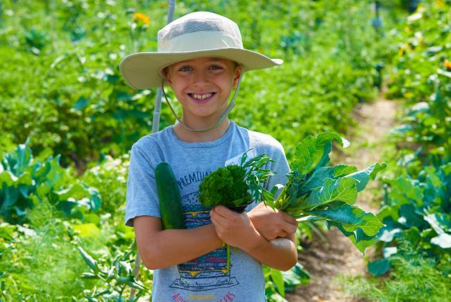 Faire découvrir le jardinage à son enfant