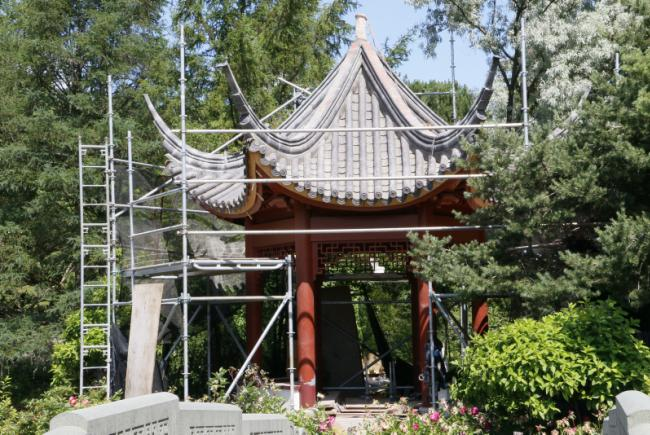 Renovations on the Chinese Garden – Summer 2017 - Restoration of the Pavilion of Infinite Pleasantness