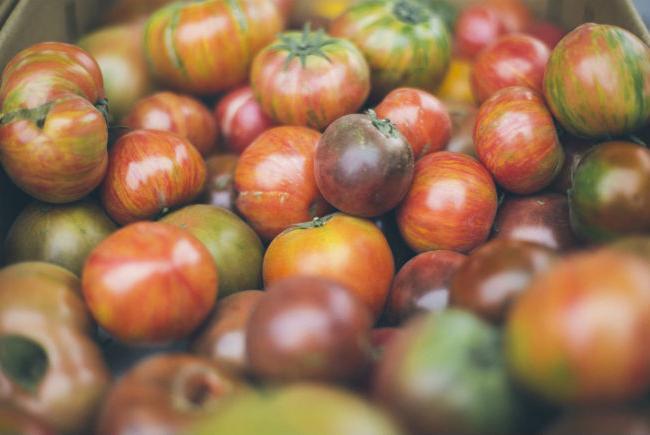Tomatoes, heritage varieties