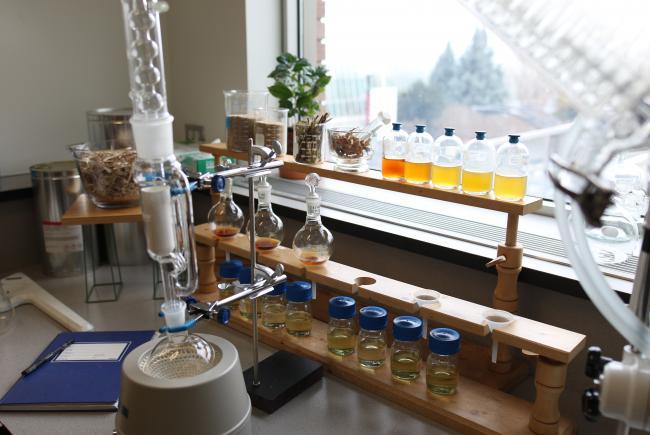 Les extraits de plantes sont préparés, analysés et testés au laboratoire pour cerner leur potentiel actif.