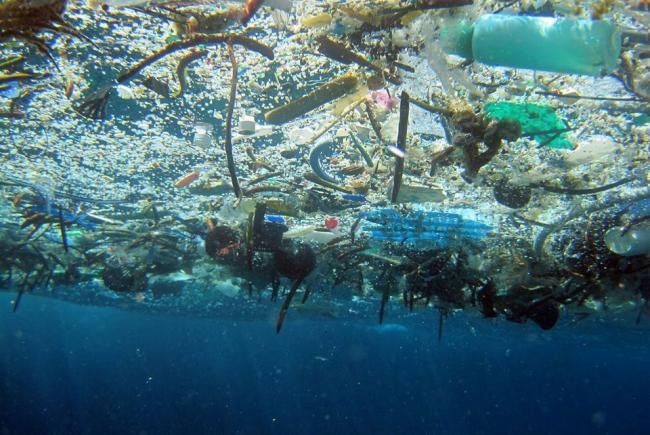 Plastic – the enemy we can't do without?