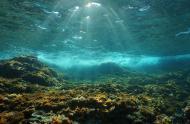 Soleil sous-marin à travers la surface de l'eau vue depuis un fond rocheux.
