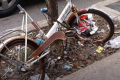 Vélo attaché à un tronc d'arbre