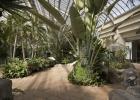 Molson Hospitality Greenhouse