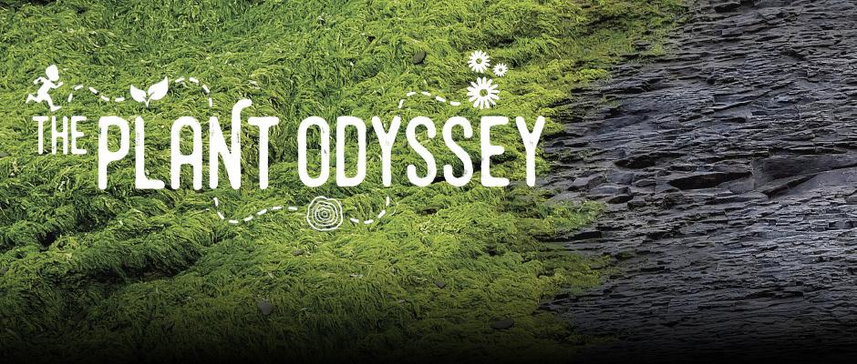 The Plant Odyssey - carrousel
