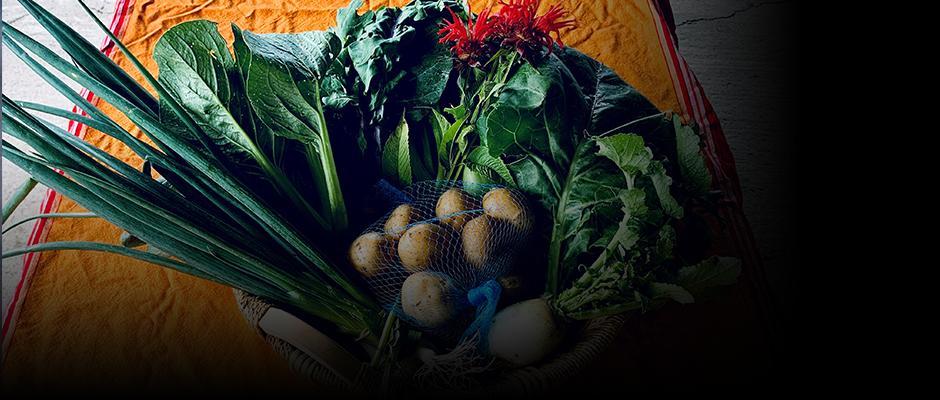 Comment nourrir plus d'humains de manière saine et durable