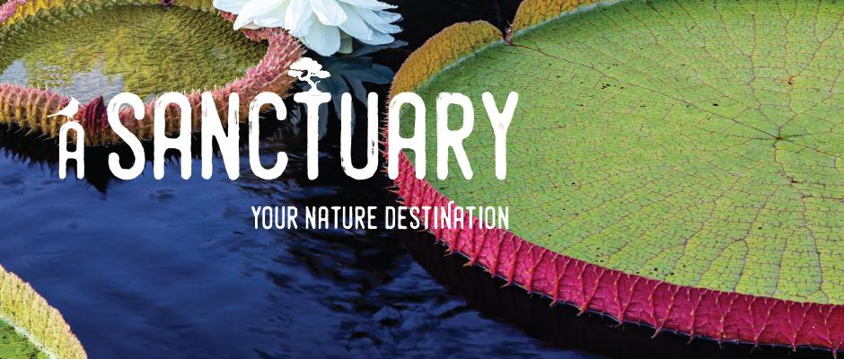Jardin botanique - A sanctuary