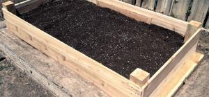 Raised bed garden under construction