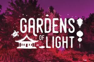 Gardens of Light 2018