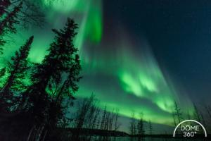 aurorae