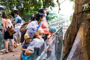 The Tropical Rainforest of the Biodôme