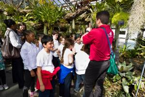 Guided tour of the Greenhouses.