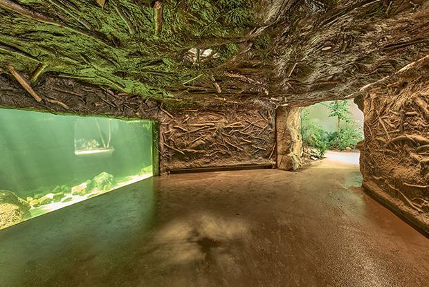 Sous le lac au castor