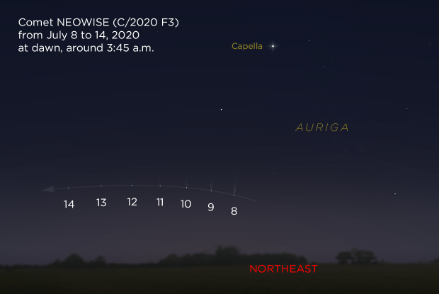Comet NEOWISE at dawn from July 8 to 14, 2020