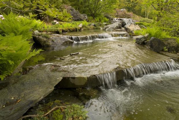 La cascade du Jardin japonais.