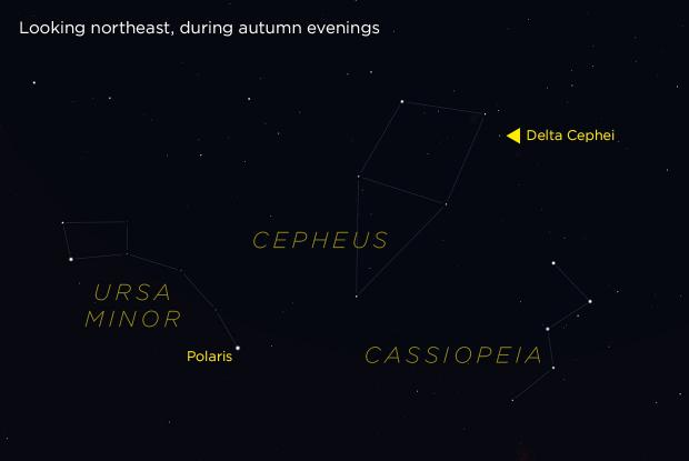 Delta Cephei (annotated)