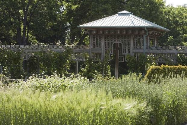 Jardin des plantes économiques.