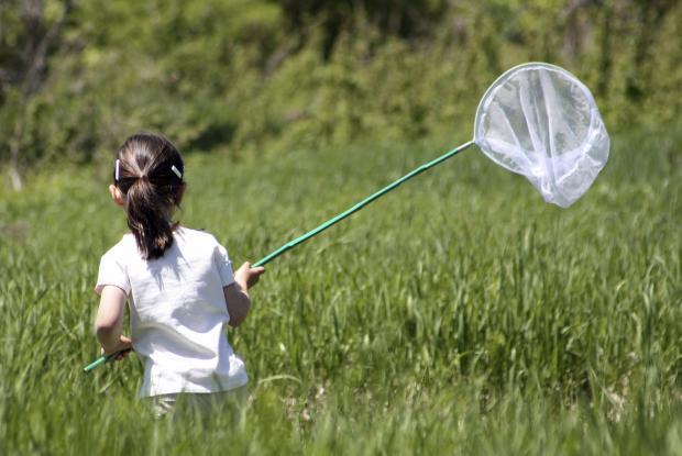 Petite fille à la chasse aux papillons