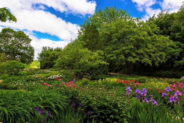 General view of the Jardins Flowery