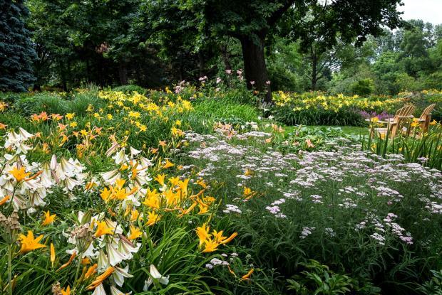Vue générale du ruisseau fleuri avec chaises Adirondack