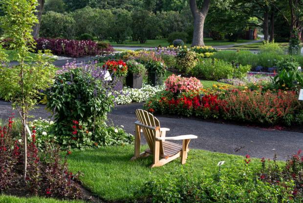 Jardin des nouveautés - Vue générale