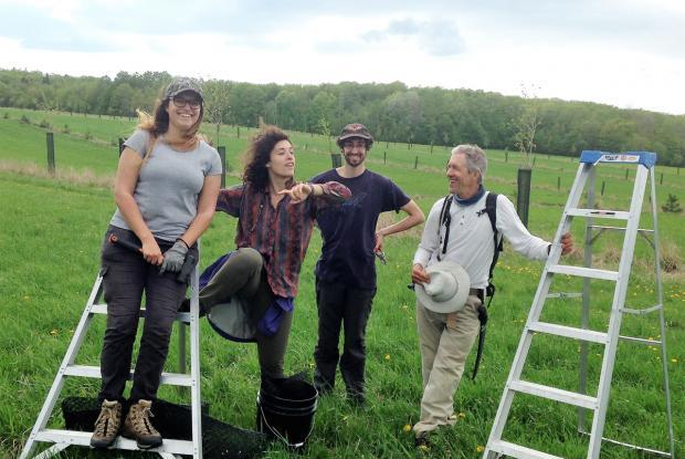 Alain Cogliastro after a day's work with students spent measuring and pruning trees on an agroforestry site.