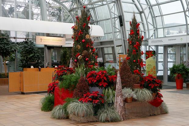 Jardin botanique- Reception Centre