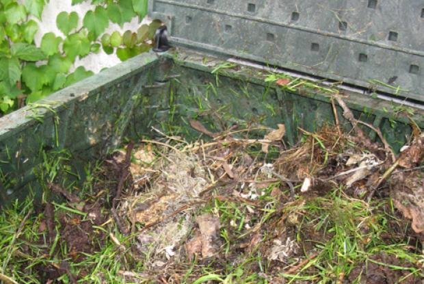 Compost domestique