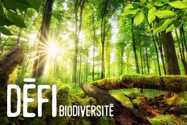 Défi biodiversité