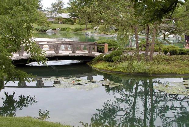 Elements Du Jardin Japonais Espace Pour La Vie