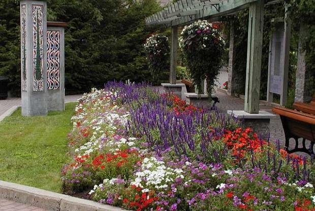 Jardin de la paix en été