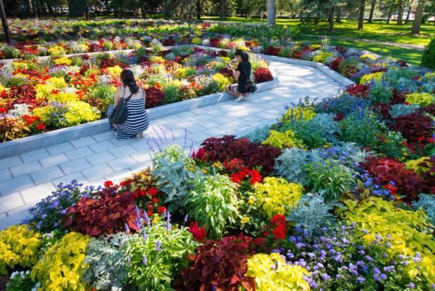 Reception Gardens 2016