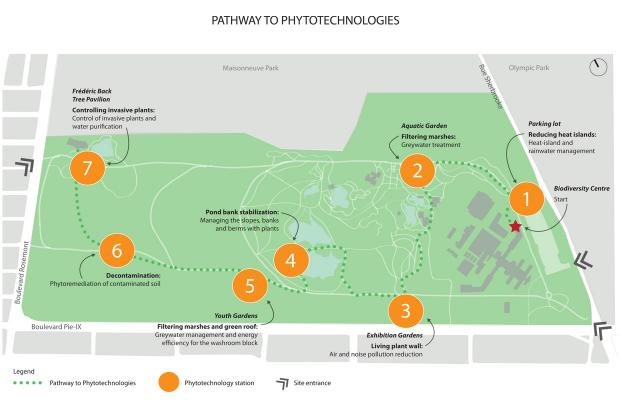 Map - Pathway to phytotechnologies