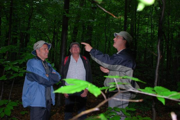 Excursion to the Boisé-des-Muir Ecological Reserve, Huntingdon. From left to right: Michel Labrecque, French botanist Francis Hallé, and IRBV's Jacques Brisson.