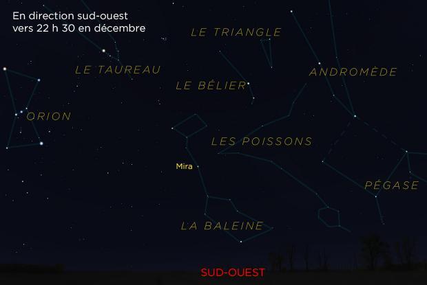 L'étoile Mira (Omicron Ceti) et ses environs (annotée)
