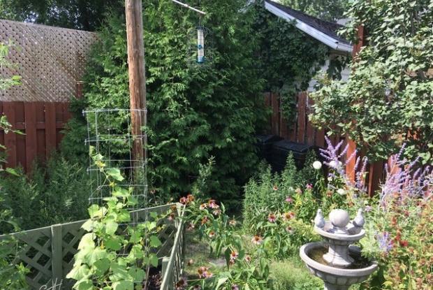 Le petit jardin de ville | Space for life