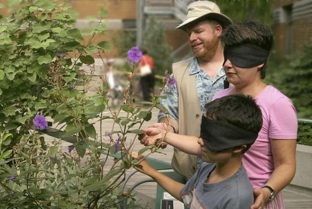 Visite de la Cour des sens au Jardin botanique de Montréal