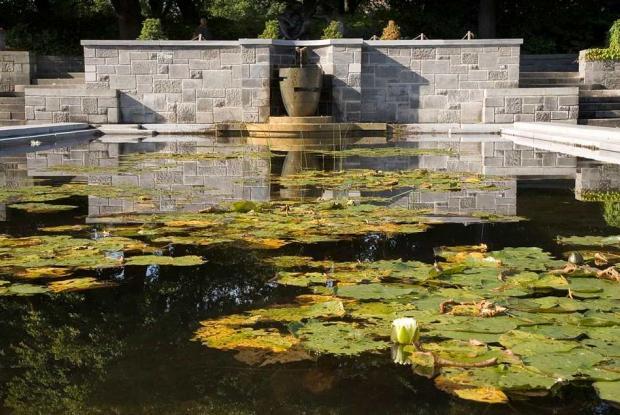 Bassin et cascade au Jardin des vivaces
