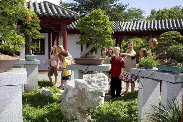 Guided tour of the Springtime Courtyard