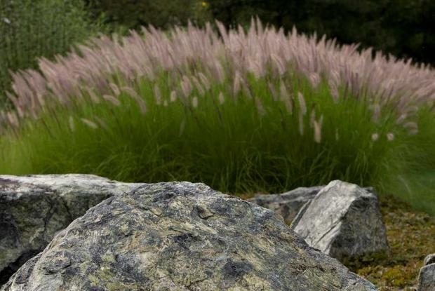 La pierre, un élément important d'un jardin japonais
