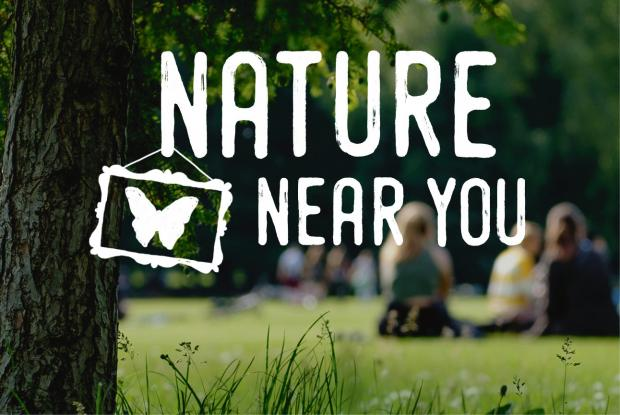 Nature near you
