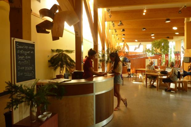 Reception counter at the Tree House
