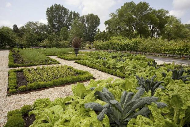 plan pour jardin