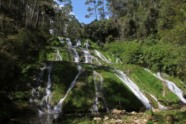 Chute au Parc La Visite à Haïti, où vivent plusieurs Gesneriaceae dans les forêts de nuage.