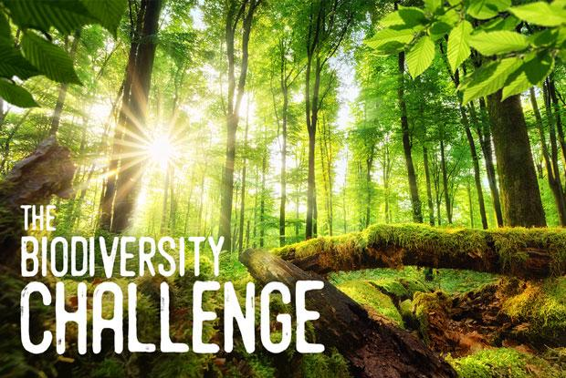 The Biodiversity Challenge