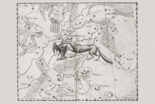 Vulpecula, Anser, Sagitta par Hevelius (1690).jpg