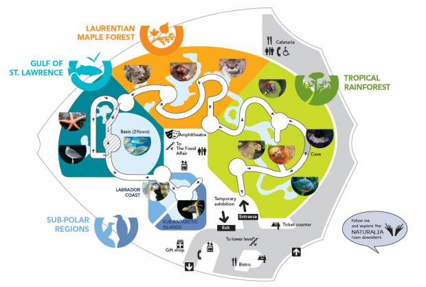 Map 4 Life.Map Of The Ecosystems At The Biodome Space For Life