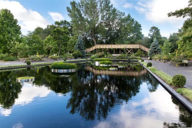 General view of the Shrub Garden - Fruticetum - Pond mirror