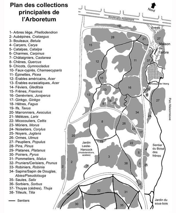 Plan - Arboretum